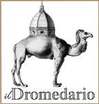 Il Dromedario